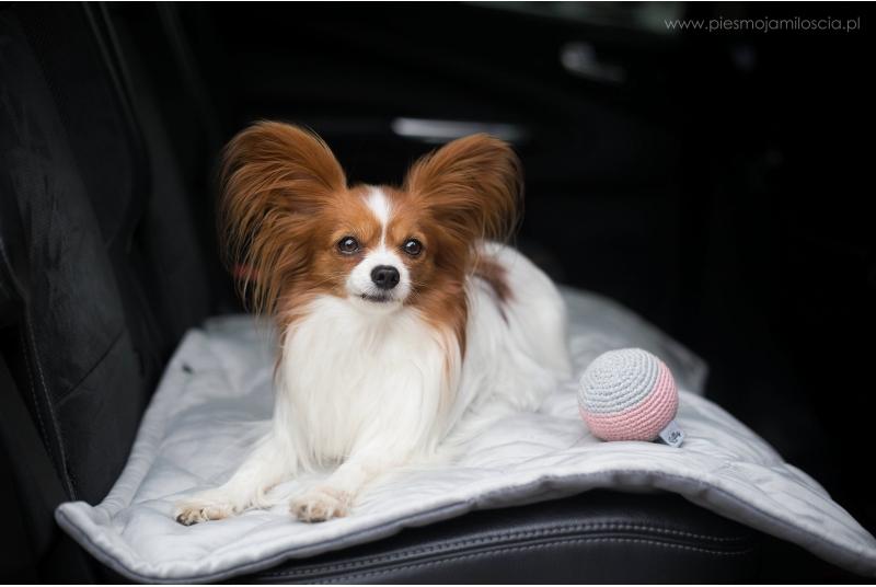 DREAMY mata podróżna dla psa lub kota - grey