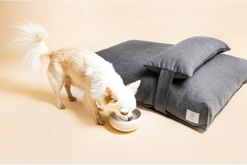 Ceramiczna miska dla psa lub kota SAND