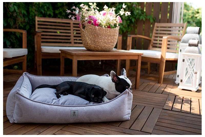 dog bed THE DREAMER orchid hush