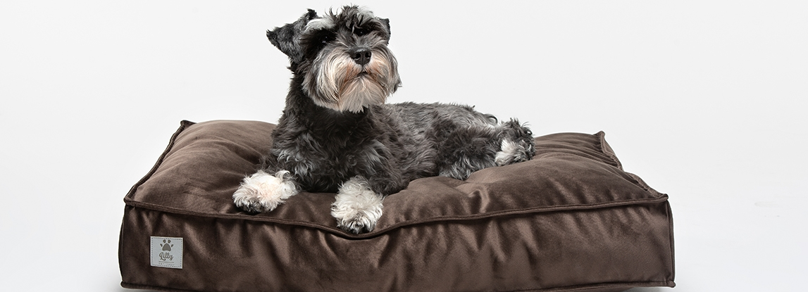 Lilly Pet Shop dog bed size guide
