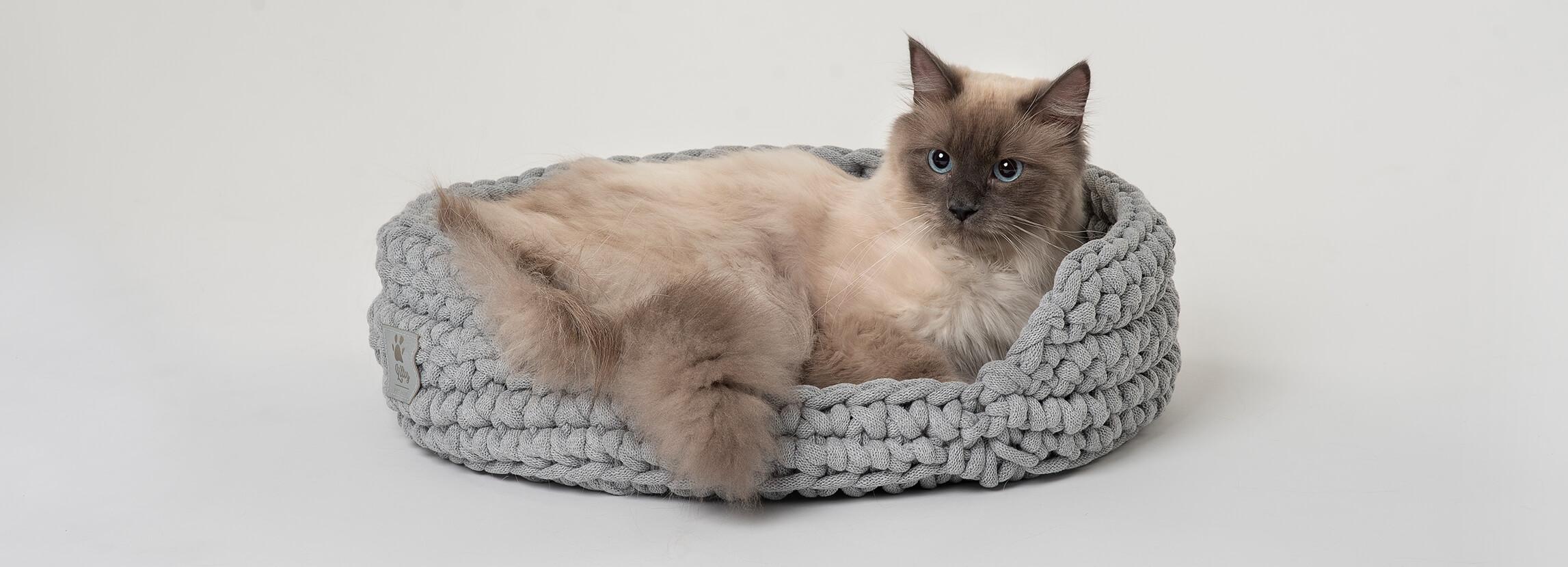 Niezbędnik kociego rodzica - czyli wyprawka dla kota