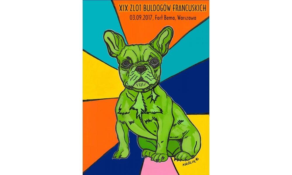 XIX Zlot Buldogów Francuskich - będziemy tam!